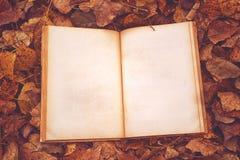 Libro de la vendimia con las paginaciones en blanco imagenes de archivo
