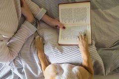 Libro de lectura en cama con un perro fotografía de archivo