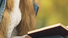 Libro de lectura femenino y aire libre del té, comodidad y calor calientes de consumición en otoño metrajes