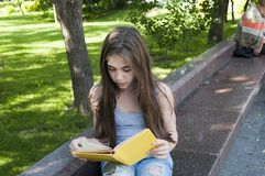 Libro de lectura lindo del adolescente que se sienta en el banco en el parque, el estudiar al aire libre Fotografía de archivo libre de regalías