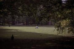 Libro de lectura solo de la muchacha en parque grande entre ?rboles imagen de archivo