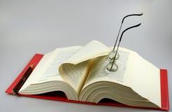 Libro de ley Fotografía de archivo