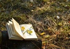 Libro de poesía Fotos de archivo libres de regalías