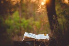 Libro de poesía debajo del árbol Foto de archivo libre de regalías