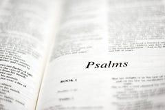 Libro dei salmo Immagine Stock