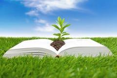 Libro del concetto di vita Immagine Stock