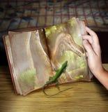 Libro del dinosauro Fotografia Stock Libera da Diritti