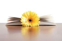Libro del fiore Fotografia Stock