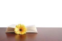 Libro del fiore Fotografie Stock Libere da Diritti