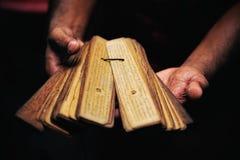 Libro del papiro Immagine Stock Libera da Diritti