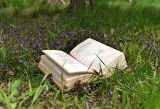 Libro del poema en campo con las flores púrpuras Foto de archivo libre de regalías
