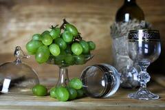 Libro della bottiglia di vino ed uva di vetro Immagini Stock