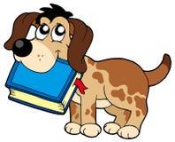 Libro della holding del cane Fotografie Stock
