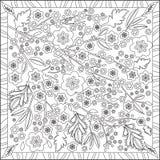 Libro della pagina di coloritura per l'illustrazione quadrata di Cherry Blossom Flower Design Vector di formato degli adulti Fotografie Stock
