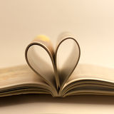 Libro di amore Immagini Stock Libere da Diritti