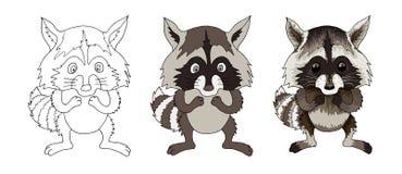 Libro di colorazione isolato personaggio dei cartoni animati animale divertente del procione illustrazione vettoriale