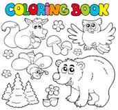 Libro di coloritura con gli animali 1 della foresta Fotografia Stock