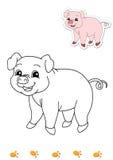 Libro di coloritura degli animali 5 - maiale illustrazione di stock