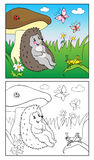 Libro di coloritura Illustrazione dell'istrice e dell'insetto per i bambini Immagini Stock Libere da Diritti