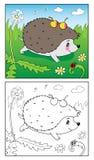 Libro di coloritura Illustrazione dell'istrice e della coccinella per i bambini Fotografia Stock Libera da Diritti