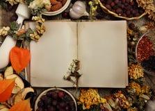 Libro di cucina vuoto con condimento differente immagine stock libera da diritti