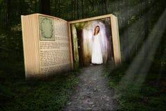 Libro di fiabe, lettura, immaginazione, legno, natura fotografia stock libera da diritti