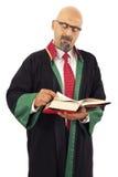 Libro di lettura del giudice Fotografie Stock