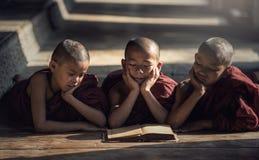 Libro di lettura del monaco del principiante fotografia stock