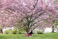 Libro di lettura della ragazza/studente che legge un libro in parco/ Fotografia Stock Libera da Diritti