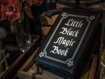 Libro di magia nera immagine stock
