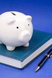 Libro e la Banca Piggy Immagini Stock