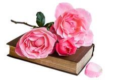 Libro e rose isolati Fotografia Stock Libera da Diritti