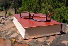 Libro e vetri Immagine Stock