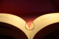 Libro ed anelli Fotografia Stock Libera da Diritti