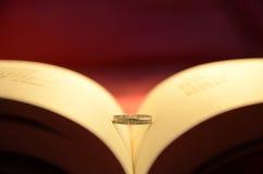 Libro ed anelli Fotografie Stock