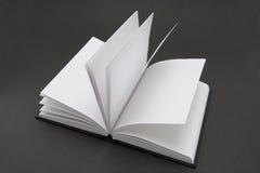 Libro en blanco Imagenes de archivo