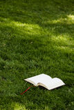 Libro en la hierba imagen de archivo libre de regalías