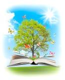Libro mágico. Foto de archivo libre de regalías