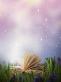 Libro mágico abierto en un prado