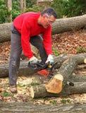 Libro macchina della quercia di taglio dell'uomo con la sega a catena Fotografia Stock Libera da Diritti