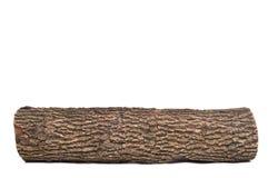 Libro macchina isolato dell'albero mozzo con struttura di legno immagine stock libera da diritti