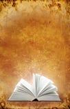 Libro magico illustrazione di stock