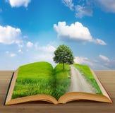Libro magico con un paesaggio Fotografia Stock Libera da Diritti