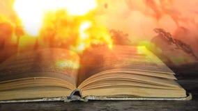 Libro militare Un libro sulla guerra stock footage
