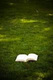 Libro nell'erba Immagine Stock
