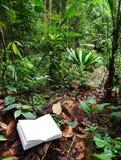 Libro nella priorità bassa tropicale della foresta pluviale Fotografia Stock Libera da Diritti