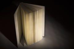 Libro nelle ombre Immagini Stock Libere da Diritti