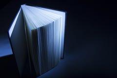 Libro nelle ombre Fotografie Stock
