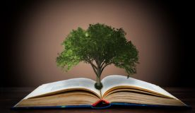 Libro o árbol del concepto del conocimiento con el árbol que crece de un libro abierto imagen de archivo