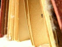 Libro polveroso aperto Immagini Stock